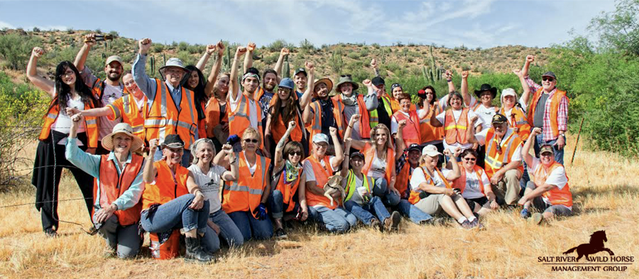 Volunteer for Salt River Wild Horse Management Group