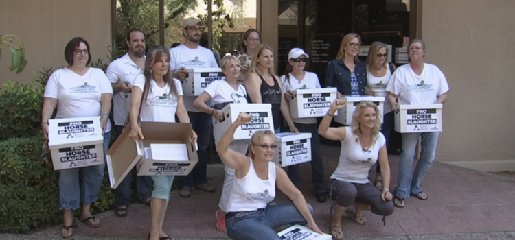 Advocates of wild horses deliver 300,000 signature petition to Sen. Flake
