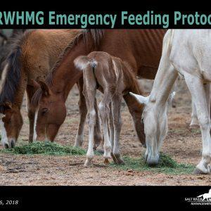 emergency feeding protocol