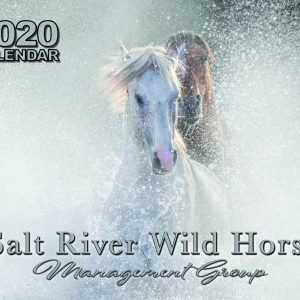 Salt River Wild Horse Management Group 2020 Calendar