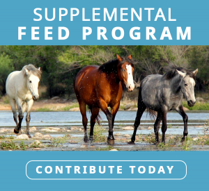 supplemental feed program